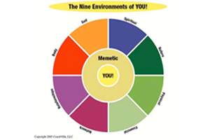 The 9 Environments of You