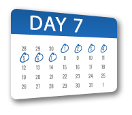 calendar-day7