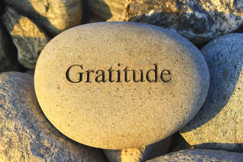 6 Daily Habits of Gratitude That Will Attract More Abundance and Joy Into Your Life